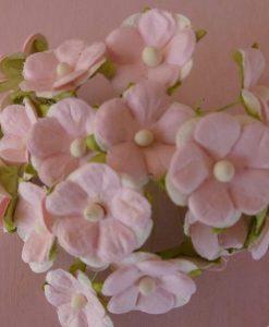 Fiori di Carta - Fiori dell'Innamorato Rosa Baby