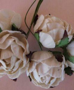 Fiori di Carta - Rose Inglesi Bianche