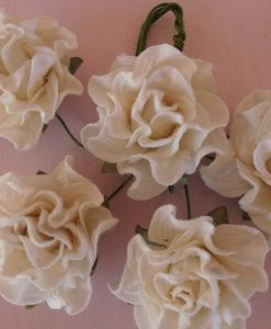 Fiori di Carta - Rose Toscane Avorio